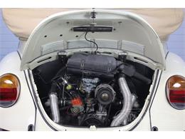 Picture of '78 Beetle - R8Y4
