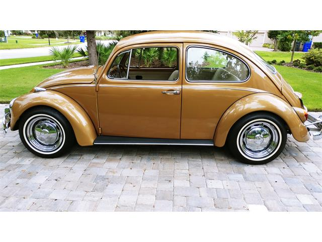 Picture of '67 Beetle - RBSH