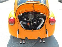 Picture of '73 Beetle - 76F2