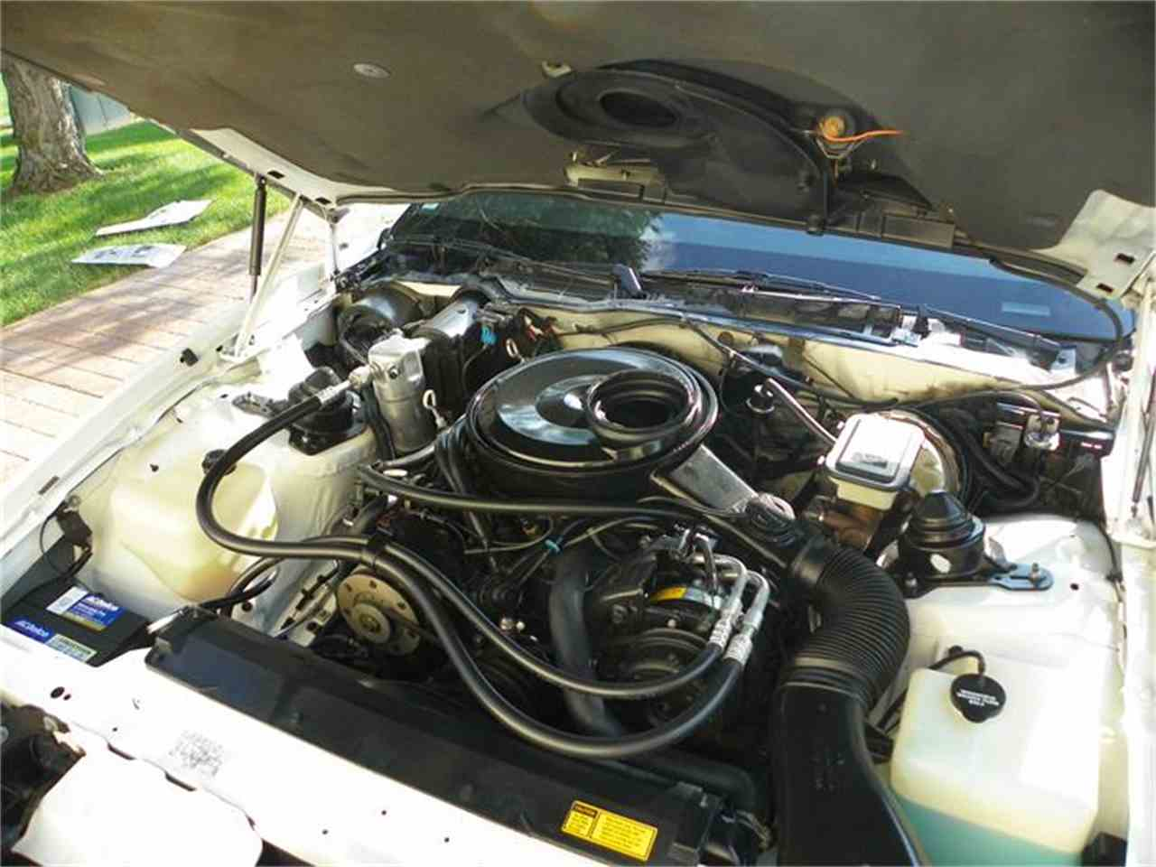 Large Picture of 1984 Firebird Trans Am located in Temperance Michigan - $19,000.00 Offered by a Private Seller - 7GHL