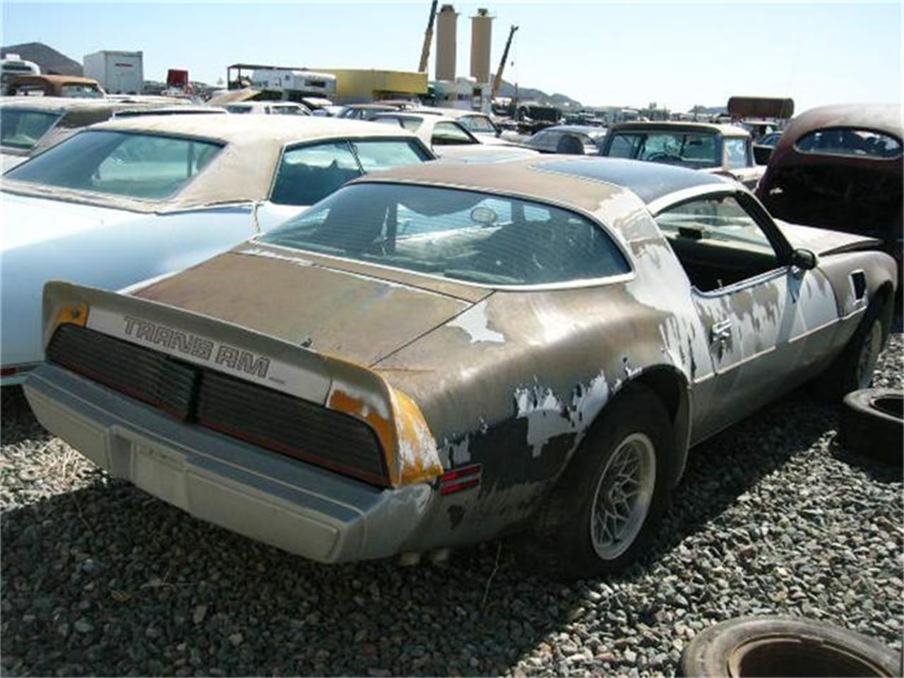 Large Picture of 1979 Firebird Trans Am located in Arizona - 8IBI