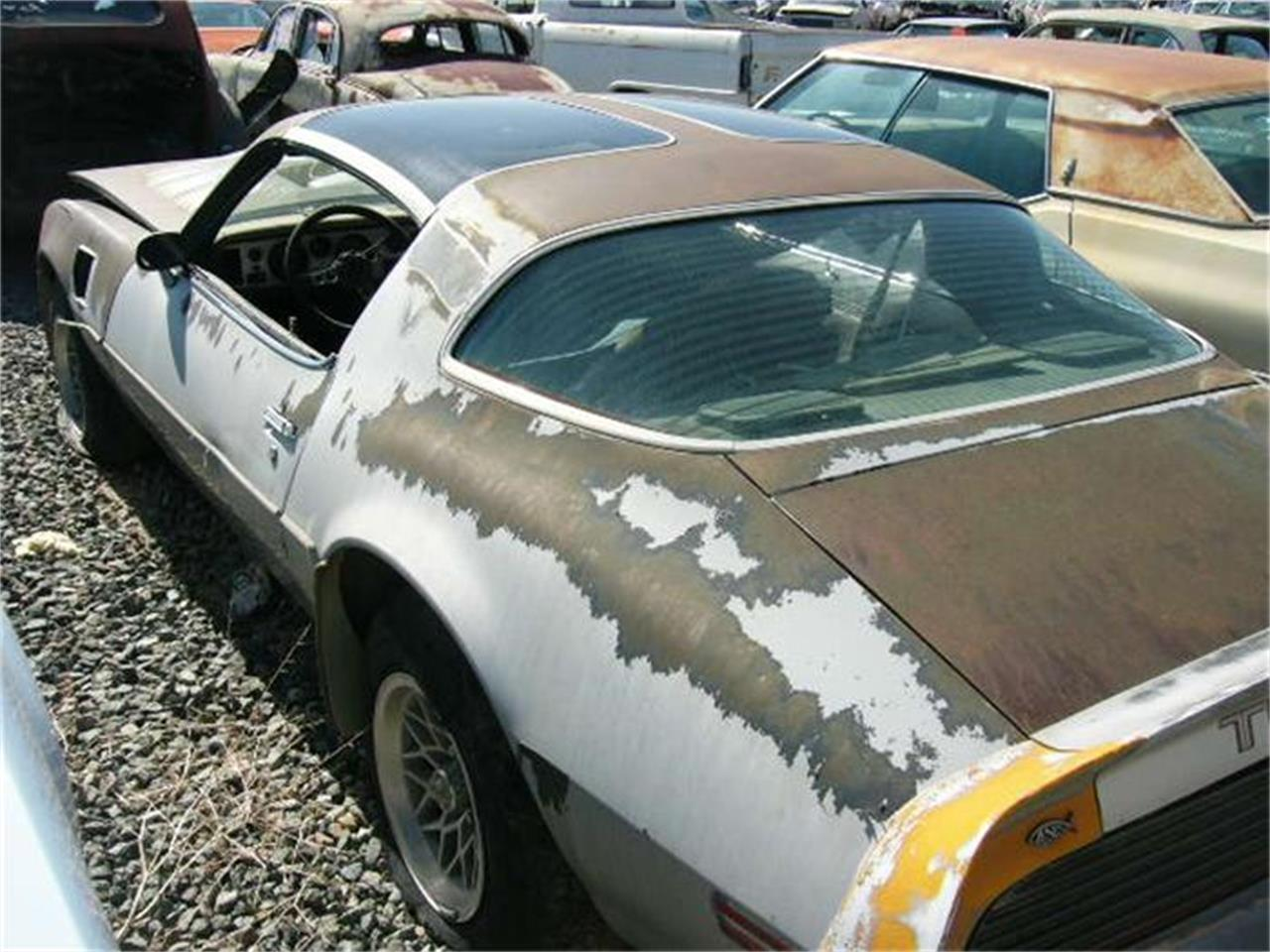 Large Picture of 1979 Firebird Trans Am Offered by Desert Valley Auto Parts - 8IBI