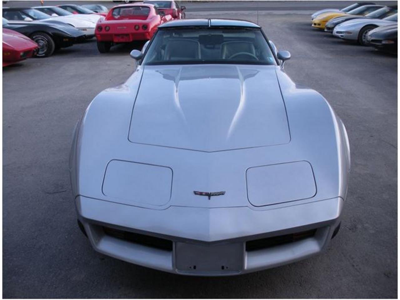 Large Picture of '81 Corvette - 9NAR