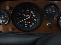 Picture of '81 Spider - ATGX