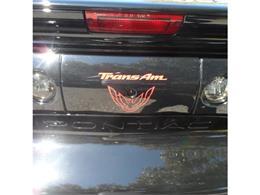 Picture of '99 Firebird Trans Am - AYRP