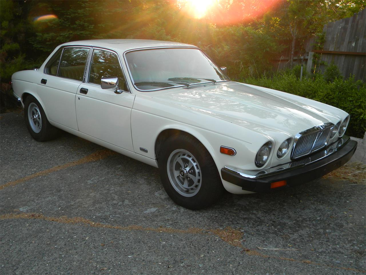Large Picture of '87 XJ6 - BS86