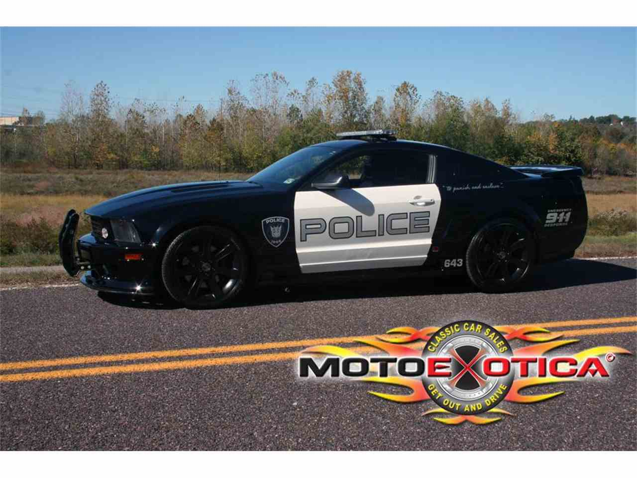 Large Picture of '05 Mustang - BVDV