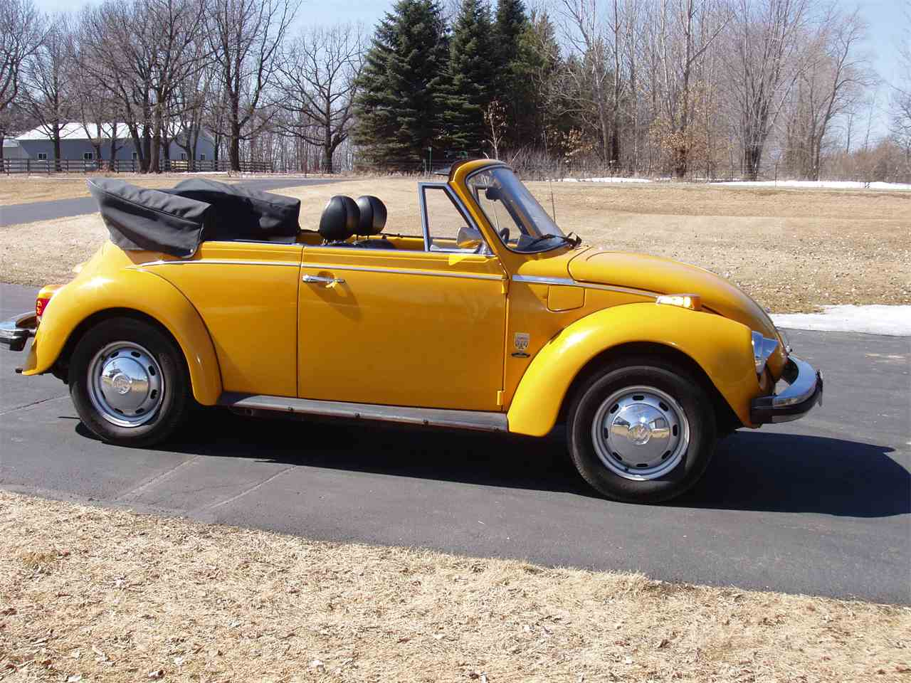 Large Picture of '78 Beetle - C2TF