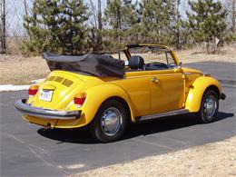 Picture of '78 Beetle - C2TF