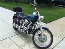 Picture of '05 Softail - C64A