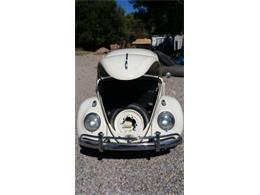 Picture of Classic 1963 Volkswagen Beetle - $11,000.00 Offered by a Private Seller - CDES