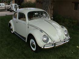 Picture of Classic '63 Beetle Offered by a Private Seller - CDES