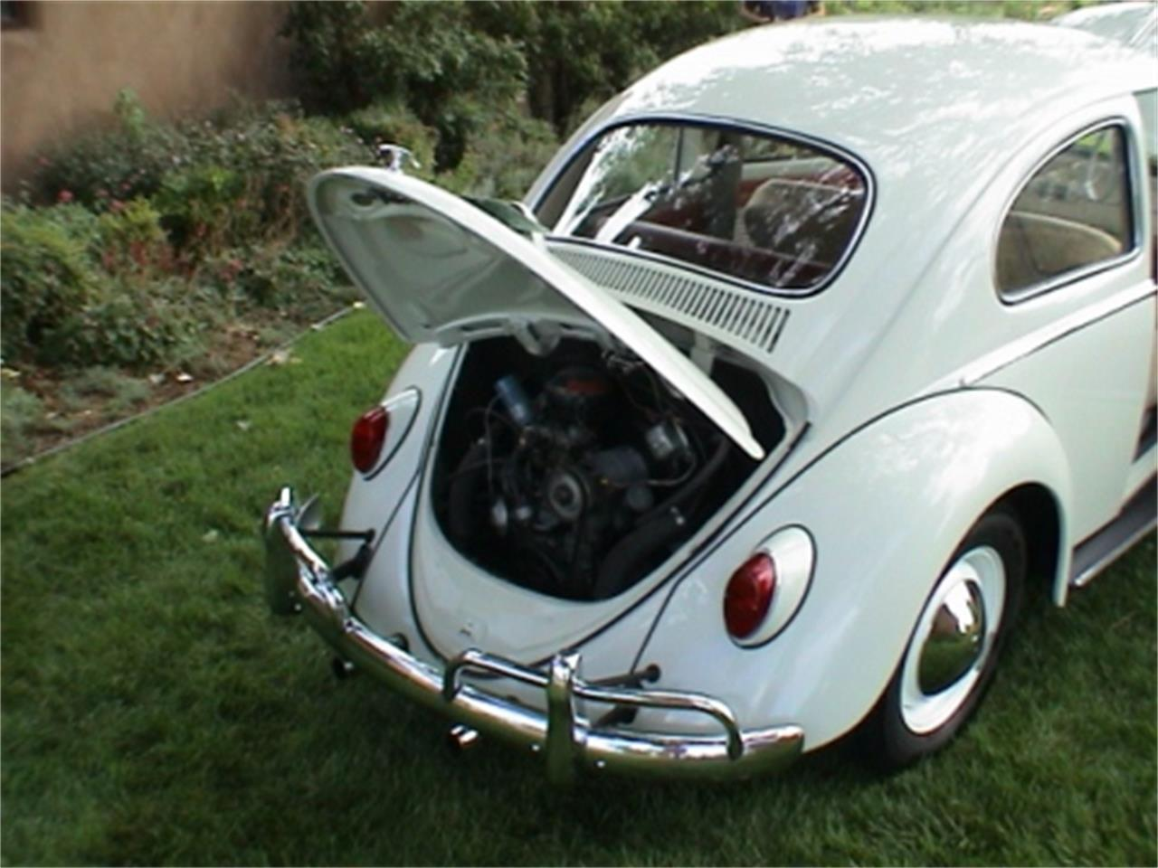 Large Picture of '63 Beetle - CDES