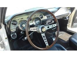 Picture of Classic 1967 GT500 - $275,000.00 Offered by Classic Connections - CQ57