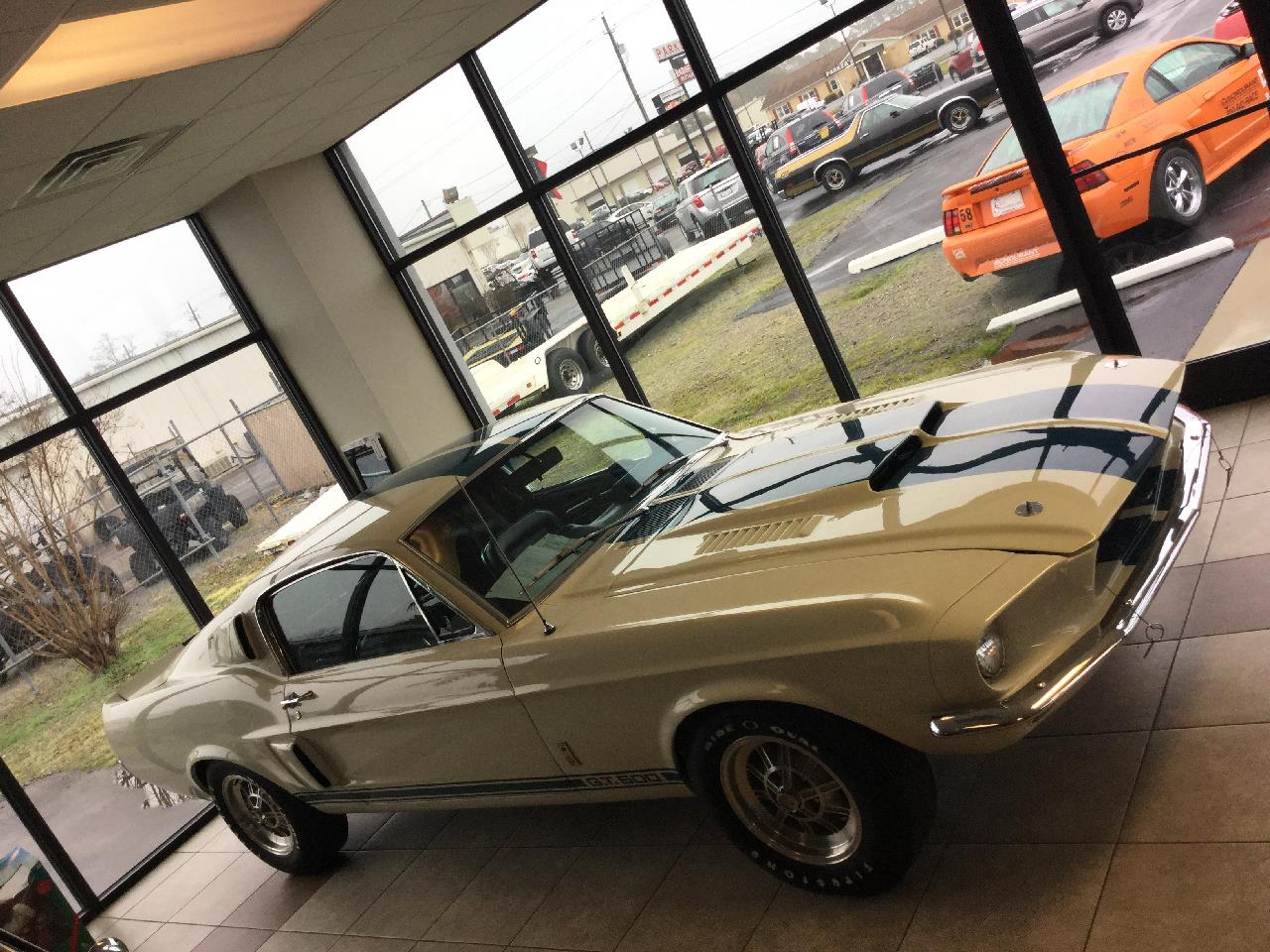 Large Picture of Classic '67 Shelby GT500 located in North Carolina - CQ57