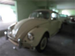 Picture of '67 Volkswagen Beetle Offered by Sobe Classics - D6E2