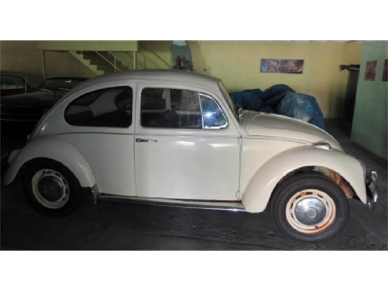 Large Picture of Classic 1967 Beetle located in Miami Florida - D6E2