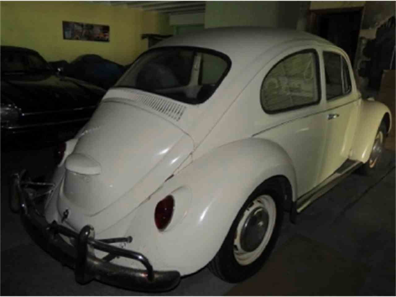 Large Picture of '67 Beetle - D6E2
