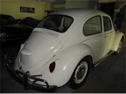 Picture of Classic '67 Beetle - $10,500.00 Offered by Sobe Classics - D6E2
