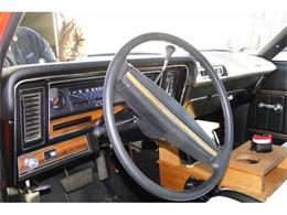 Picture of '75 Buick Skylark located in Prior Lake Minnesota Offered by Big R's Muscle Cars - DCDX
