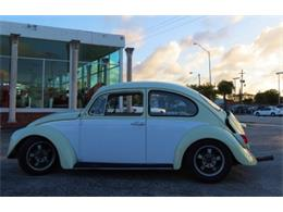 Picture of 1970 Beetle located in Florida - DRVK