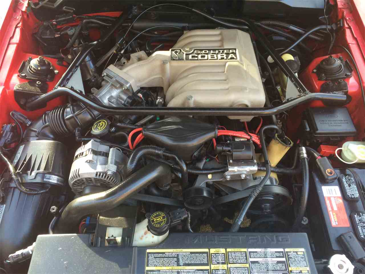 Large Picture of '94 Mustang SVT Cobra - DS5W