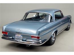 Picture of '66 Mercedes-Benz 250SE - DSVZ