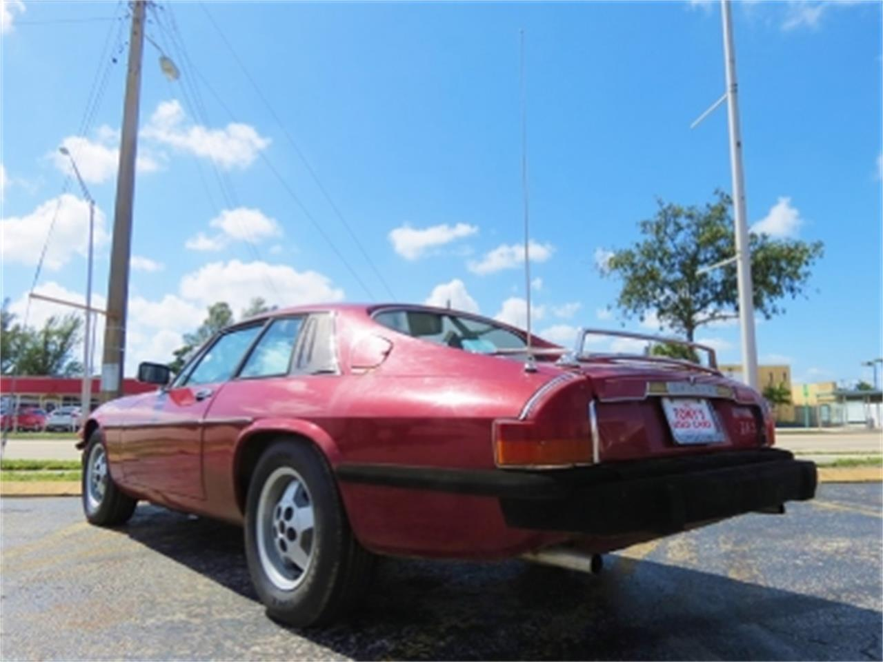 Large Picture of '78 XJS - $8,500.00 Offered by Sobe Classics - DUZJ