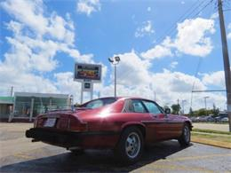 Picture of 1978 Jaguar XJS located in Miami Florida - $8,500.00 Offered by Sobe Classics - DUZJ