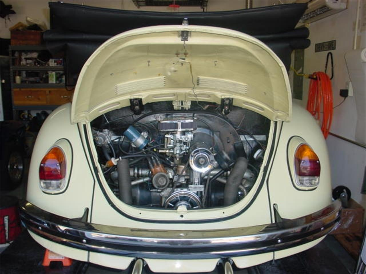 Large Picture of '68 Beetle - DVTX