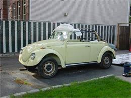 Picture of '68 Beetle - DVTX