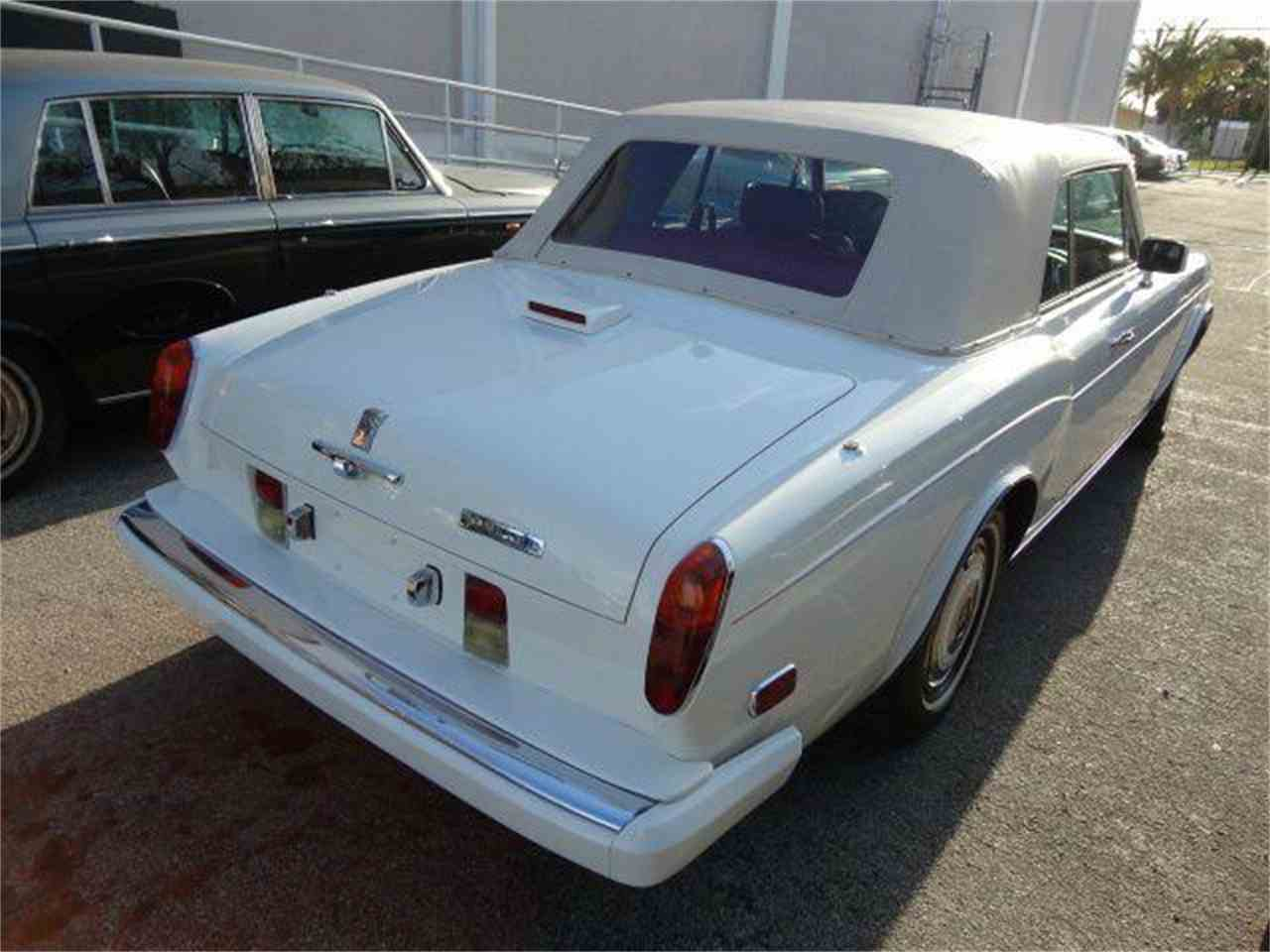 Large Picture of '86 Corniche - DZZB