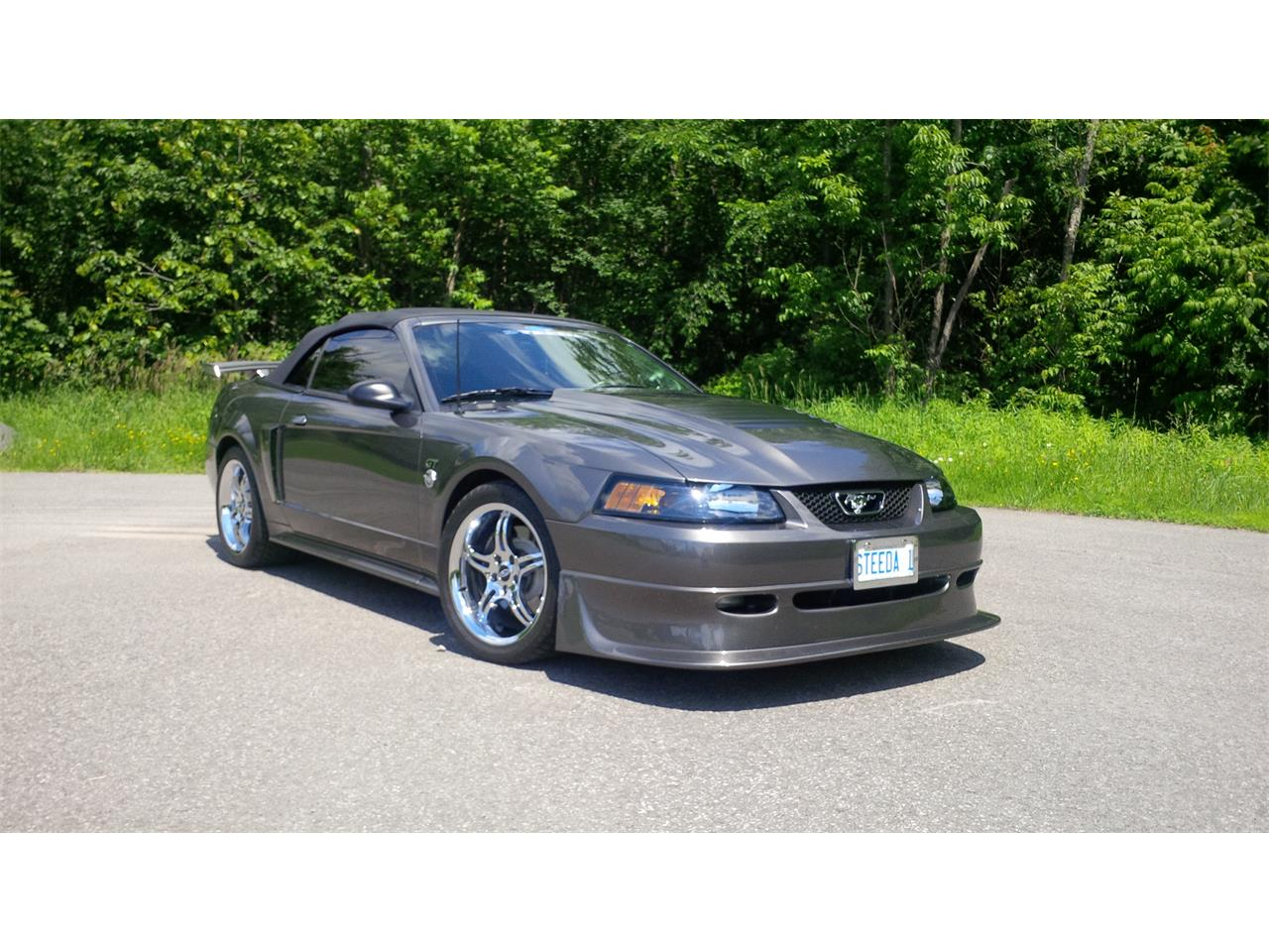 Large Picture of '04 Mustang - E0ZC