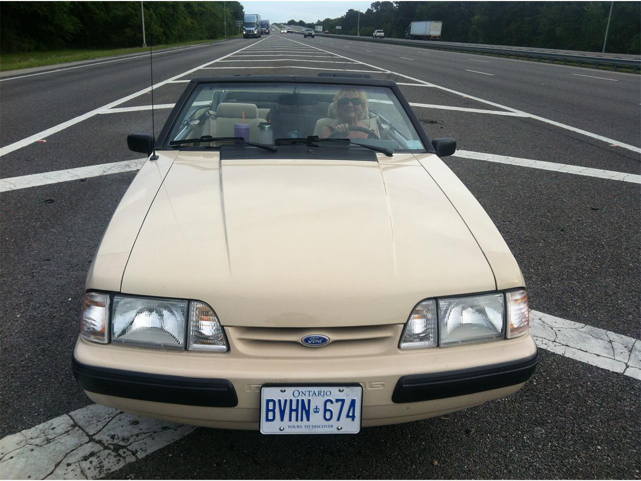 Large Picture of '88 Mustang - E5ES