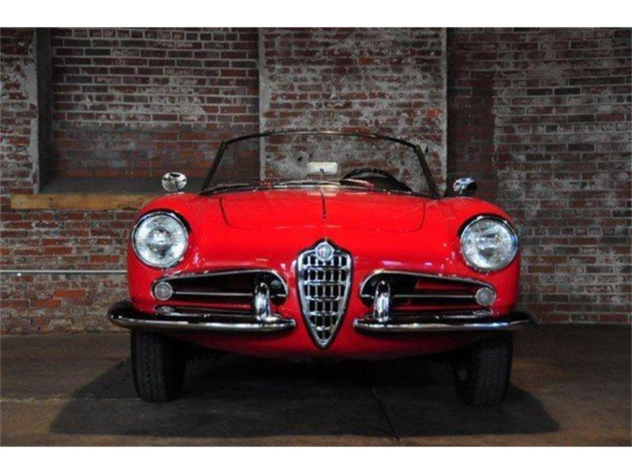 Large Picture of '60 Alfa Romeo Giulietta Spider - $102,500.00 Offered by Chequered Flag International - E98E