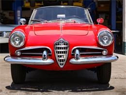 Picture of Classic 1960 Alfa Romeo Giulietta Spider Offered by Chequered Flag International - E98E