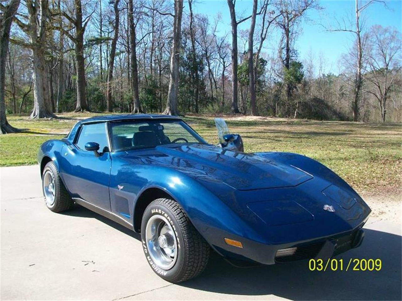 Large Picture of '78 Corvette - EAD1