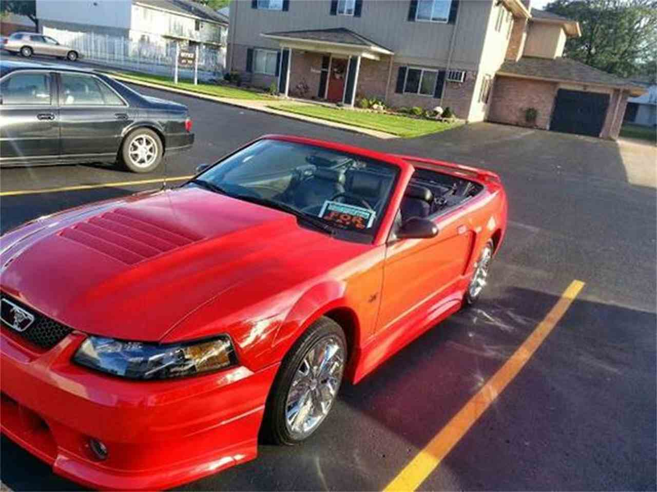 Large Picture of '01 Mustang - EADN
