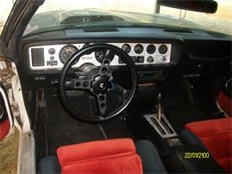 Picture of 1981 Pontiac Firebird Trans Am - $10,000.00 Offered by a Private Seller - EJ3P