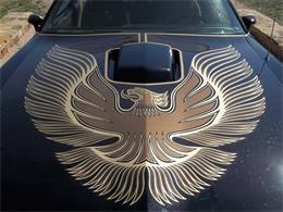 Picture of '81 Firebird - ET91