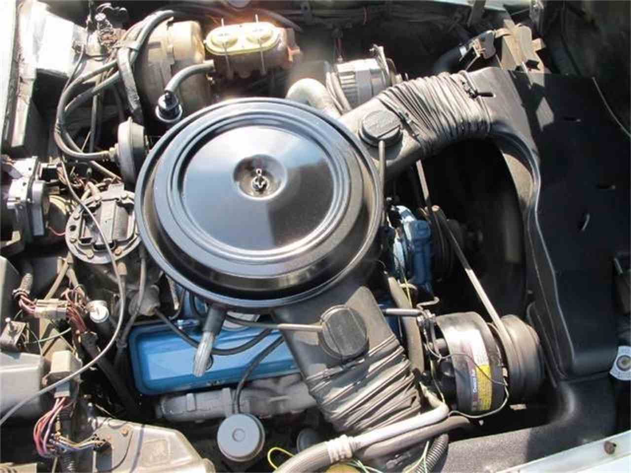 Large Picture of '79 Corvette - ETAN