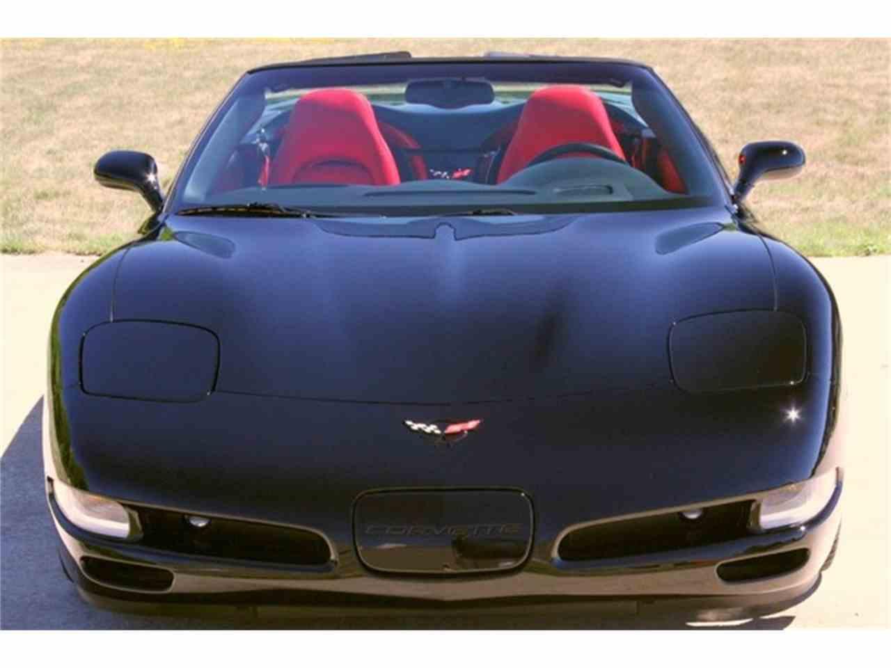 Large Picture of '04 Corvette - ETB6