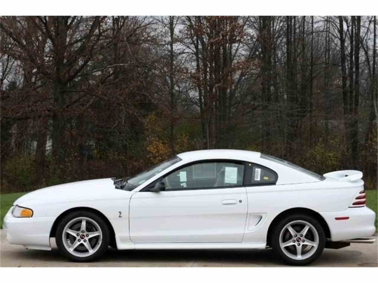 Large Picture of '95 Mustang - ETBA