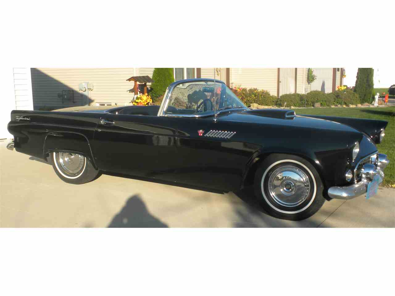Large Picture of '55 Thunderbird - ETYC