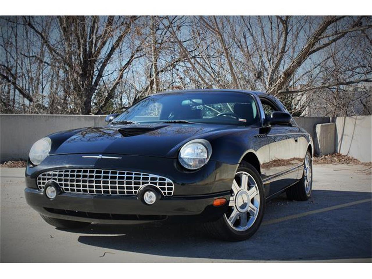 Large Picture of 2004 Thunderbird located in Missouri - EU0K