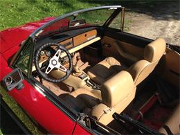 Picture of 1981 2000 Spider - EXPK