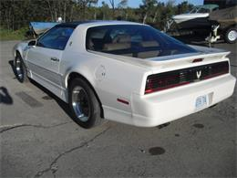 Picture of '89 Pace Car - F0Y1