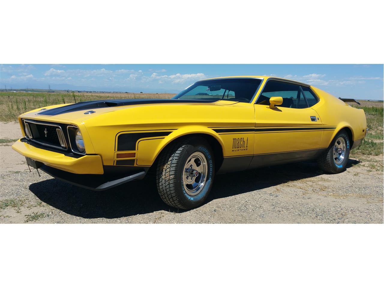 Large picture of 73 mustang mach 1 f0zm