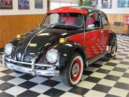 Picture of '71 Beetle - F22Q