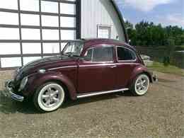 Picture of '66 Beetle - F2BE